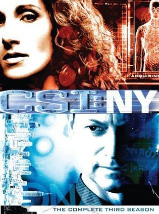 犯罪现场调查:纽约篇第三季