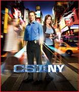 犯罪现场调查:纽约篇第七季