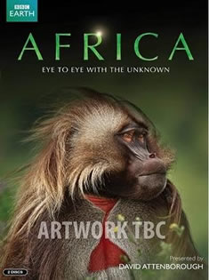 非洲第一季