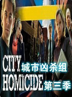 城市凶杀组第三季