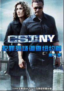 犯罪现场调查:纽约篇第六季