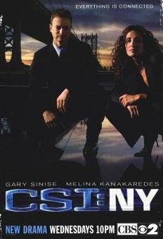犯罪现场调查:纽约篇第一季